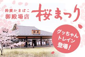 御殿場店「桜まつり」